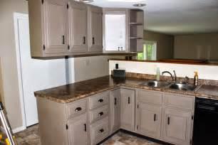 Chalk Paint My Kitchen Cabinets » Home Design 2017