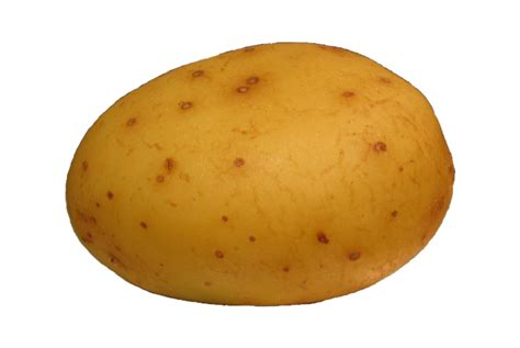 Potato Free by Potato Clipart Clipart Suggest