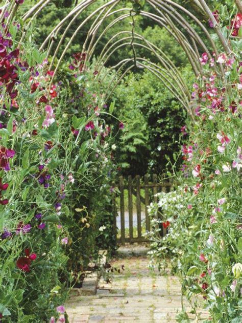 Brewster Flower Garden Reviews Garden Ftempo Brewster Flower Garden