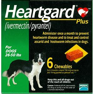 heartgard plus for dogs 26 50 lbs heartgard plus for dogs 26 50 lbs green 6 chewables vetdepot
