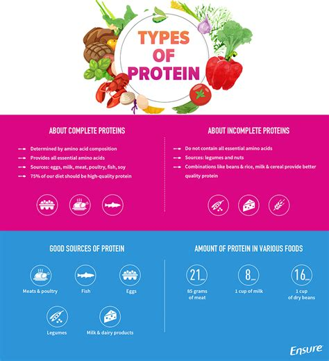 protein types types of protein pictures to pin on pinsdaddy