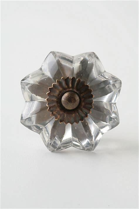 Anthropologie Glass Knobs by Glass Melon Knob Brass Anthropologie