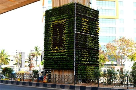 bengaluru gets its 1st vertical garden to curb pollution