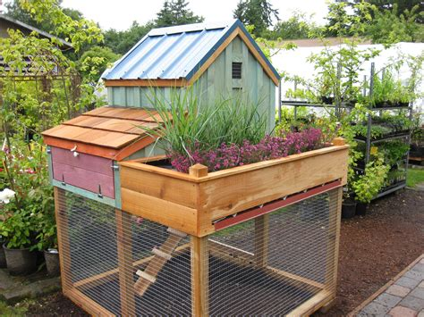 Cedar Chicken Coop Run With Planter by Welcome To Saltbox Designs Saltbox Designs