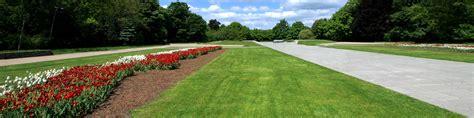 bulk grass seed bulk grass seed suppliers amenity landscape mixtures