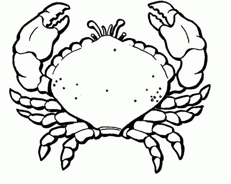 crab pictures to color kids coloring