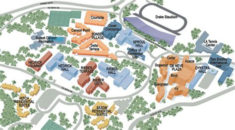 rieber terrace floor plan ucla tips on cus housing explained