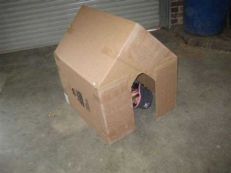 cardboard box house cardboard box play house