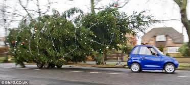 man tows big tree with small electric car boreme