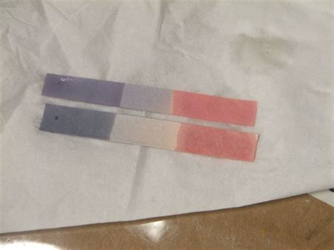 Bases Make Litmus Paper Turn - how to make litmus paper a complete step by step guide