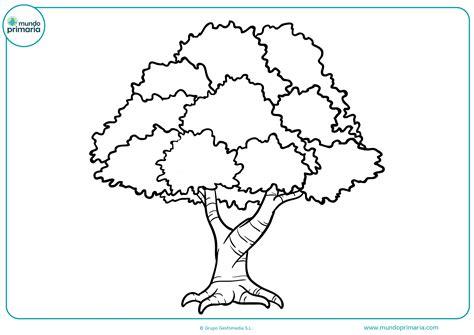 dibujos de rboles para colorear para ni os dibujos de 225 rboles para colorear mundo primaria