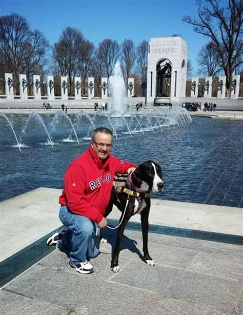 service dog housing laws ag helps vet who was denied housing because of his service dog ny daily news