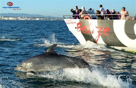 algarve experience catamaran algar experience in algarve my guide algarve