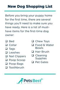 things new homeowners need to buy new dog owner s guide pets best tips for bringing your new dog home