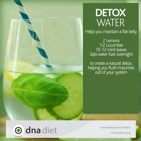 What Is Detox Used For by Detox Water Dna Diet