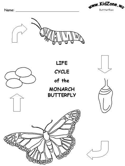 butterfly metamorphosis coloring pages butterfly life cycle coloring page az coloring pages