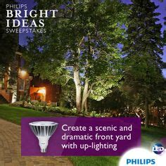 philips lighting modesto ca 1000 images about bright ideas for the entryway on