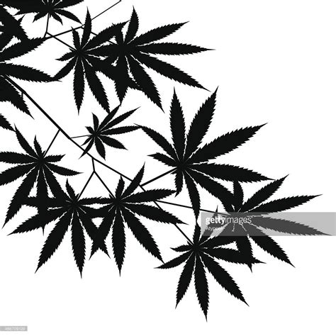 weed vegetable silhouette black and white background