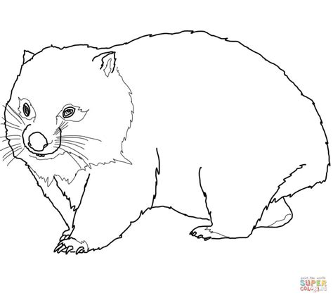 Wombat Coloring Page Wombat Coloring Page Free Printable Coloring Pages
