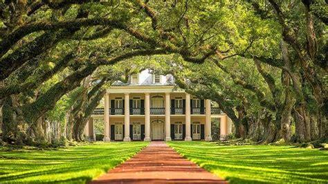 new orleans plantation tours oak alley plantation