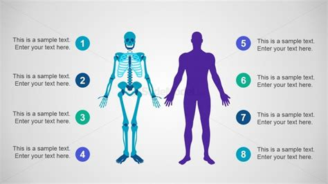 layout body powerpoint 04 skeleton powerpoint body slidemodel