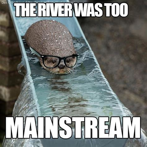 Funny Otter Meme - hipster otter beheading boredom