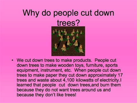 top 28 why do we cut christmas trees maxresdefault jpg