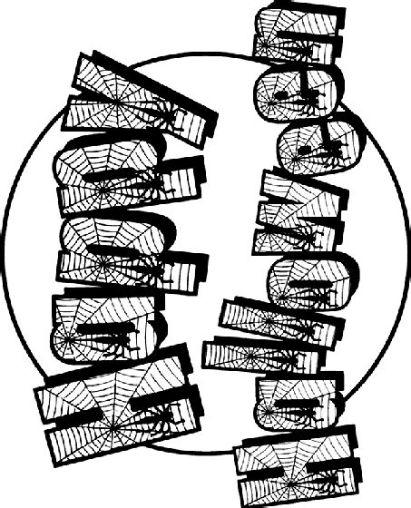 W Is For Web Coloring Page by Sign Of Spider Webs Coloring Page Crayola