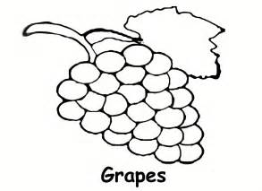grapes coloring page sidther free printable preschool level coloring pages