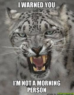 Not A Morning Person Meme - i warned you i m not a morning person make a meme
