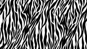 Zebra print 1600x900 461000