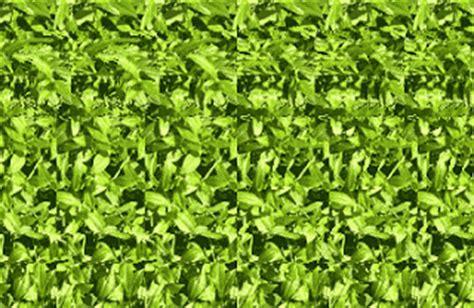 imagenes abstractas tridimensionales fotos bellisimas imagenes tridimensionales