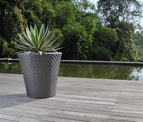 modern outdoor potted plants