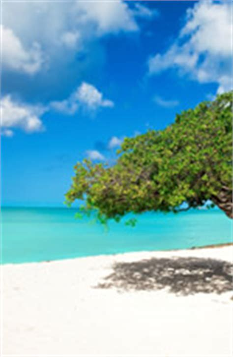 cruises to aruba from florida 2017 happy gay travel gay group cruises calendar 2017 2018