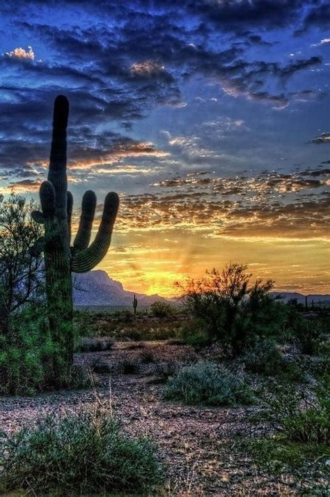 southwest landscape art i love pinterest