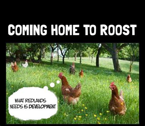roost1 jpg