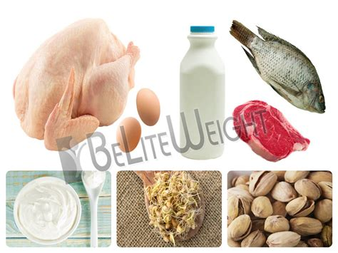 protein rich meals protein rich meals for weight loss signs of type 2 diabetes