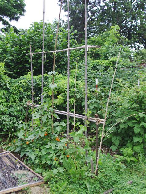 Handmade Garden - portfolio handmade gardens pdxhandmade gardens pdx