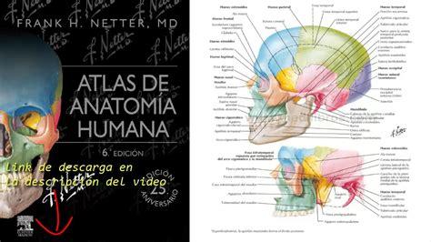 imagenes netter pdf atlas de anatom 237 a humana 6a edici 243 n netter youtube
