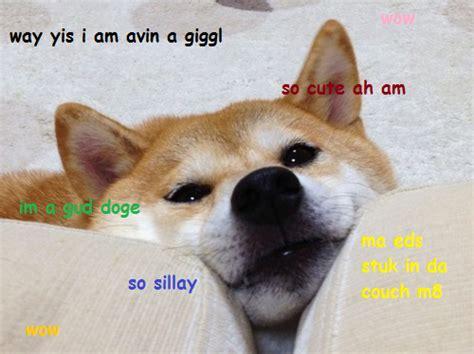 Original Doge Meme - marley and me dog dies memes
