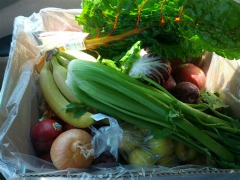 nature s garden delivered organic food delivery teamnovack