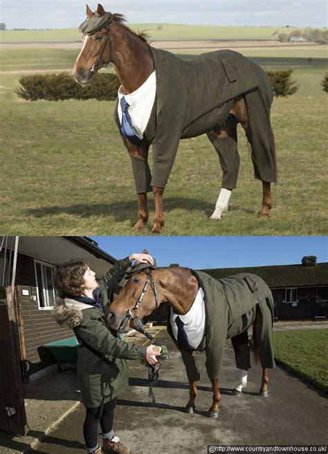 Sho Kuda Untuk Manusia tak mau kalah dari manusia kuda juga pakai jas rancangan desainer kabar berita artikel