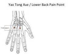 Lower back pain point 3 xue sway location two points on the dorsum of
