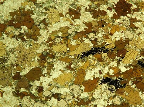 hornblende in thin section hornblende in thin section 28 images igneous minerals