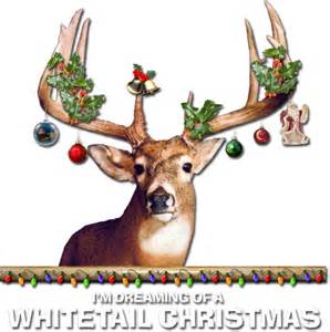 i m dreaming of a whitetail christmas whitetail deer