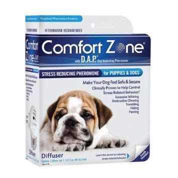 comfort pet certification comfort zone with dap for dogs diffuser three dogs training