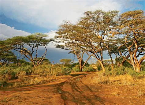 Landscape Architecture Kenya Image Gallery Kenya Landscape