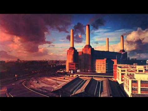 dogs pink floyd pink floyd dogs song