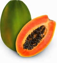 go blog papaya fruit nutrition facts