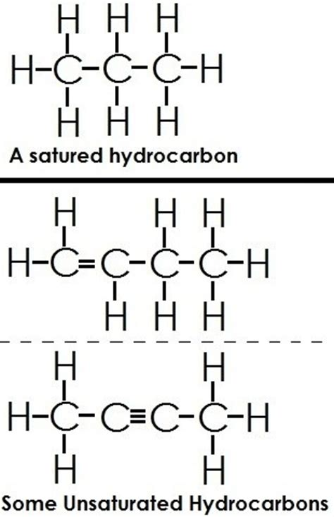 carbohydrates and hydrocarbons what are the different types of hydrocarbons quora